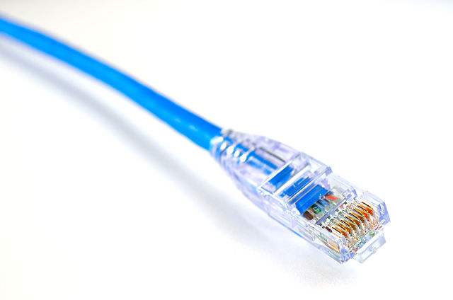 blue ethernet cord