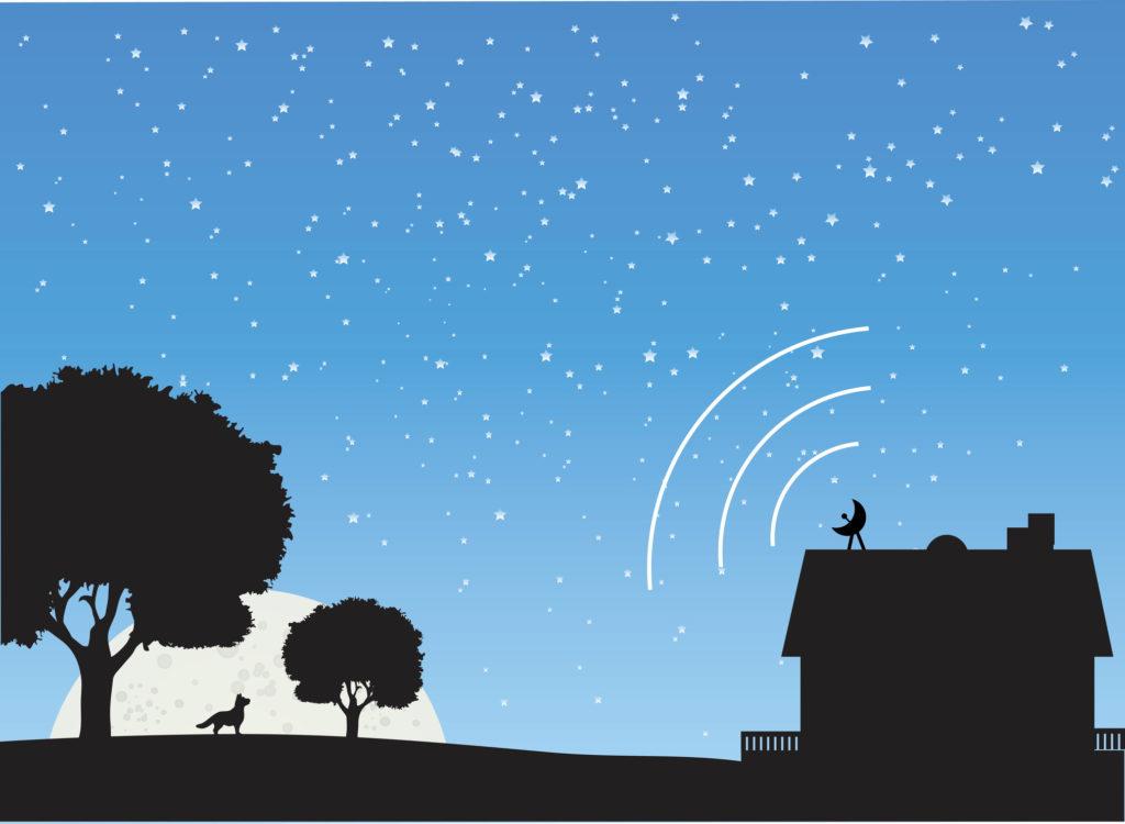 Rural Scene Satellite Connect