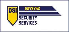 dsi security logo