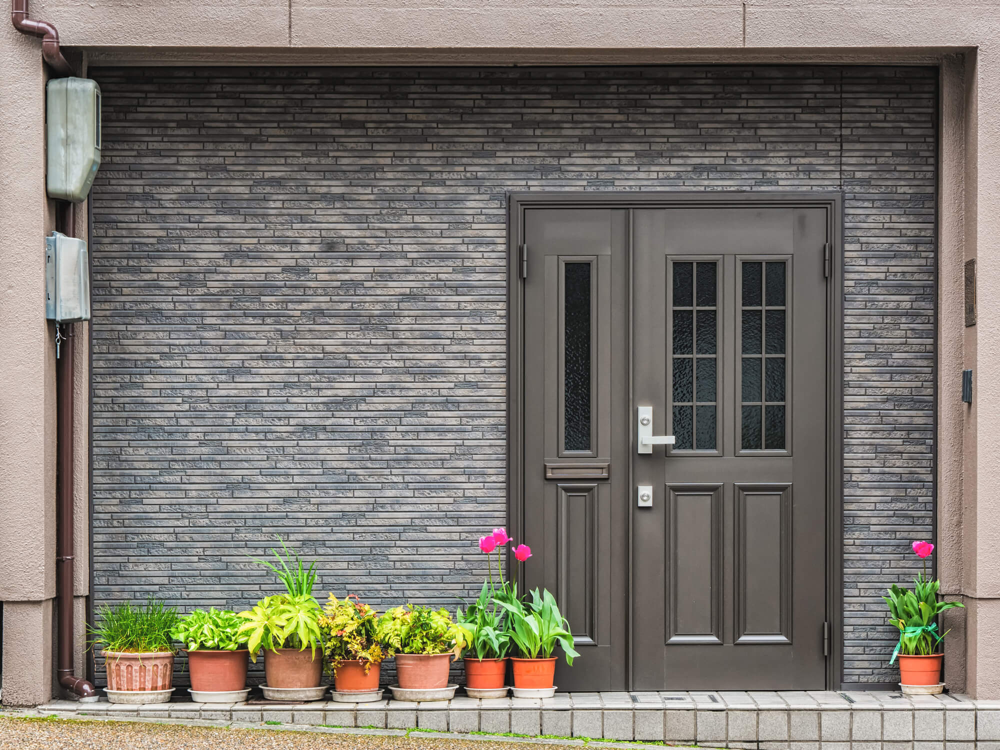 Gray front door in gray brick wall with green plants in a row on the left