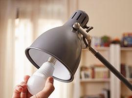 light bulb in lamp
