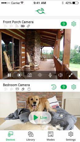 arlo q camera app view