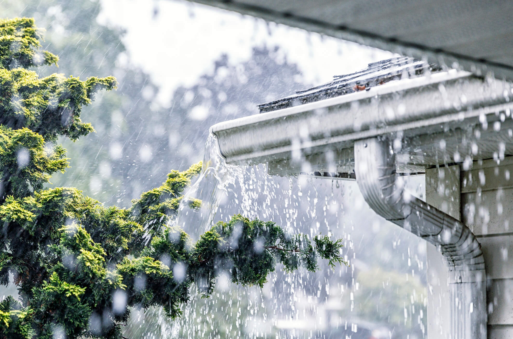 Eaves of a house in heavy rain