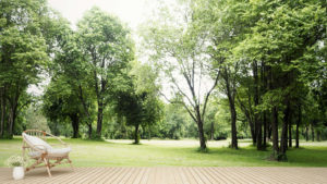 Wide view of a backyard with patio, trees, and outdoor chair