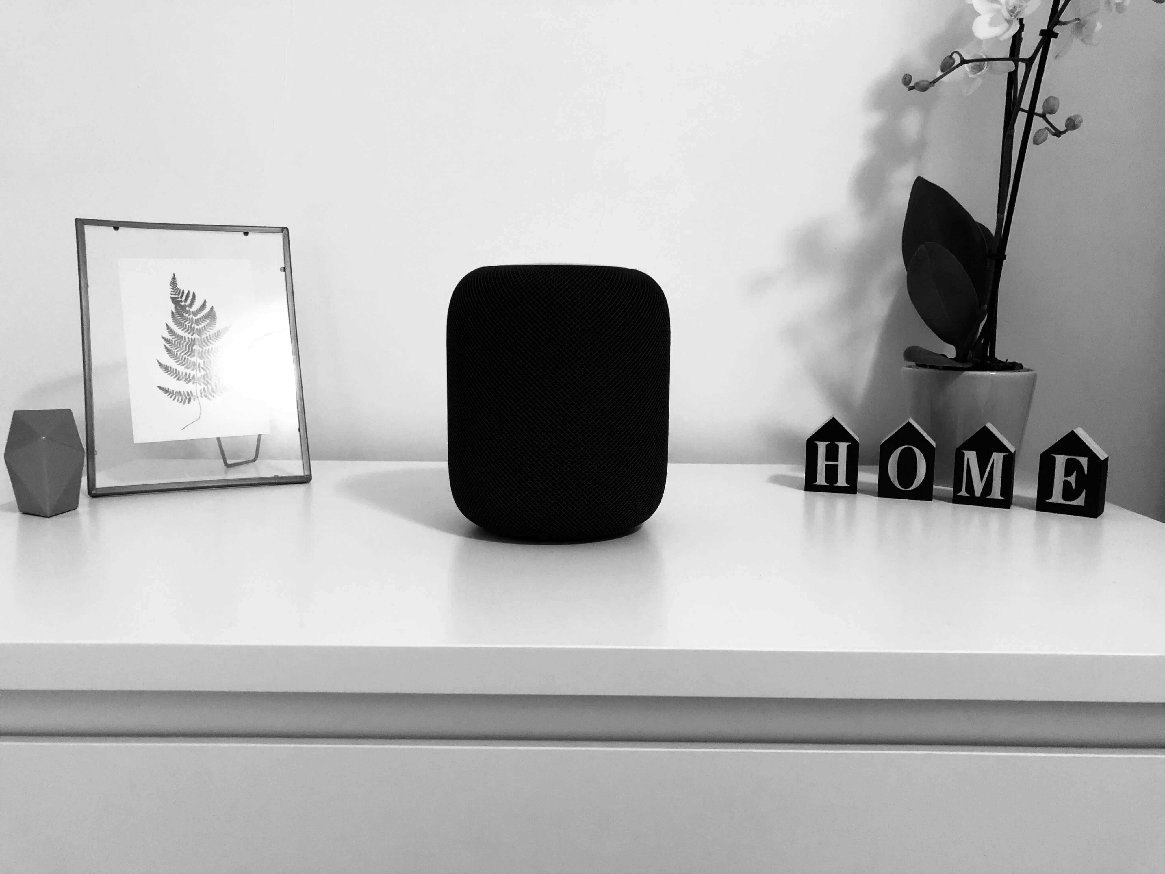 Smart speaker house