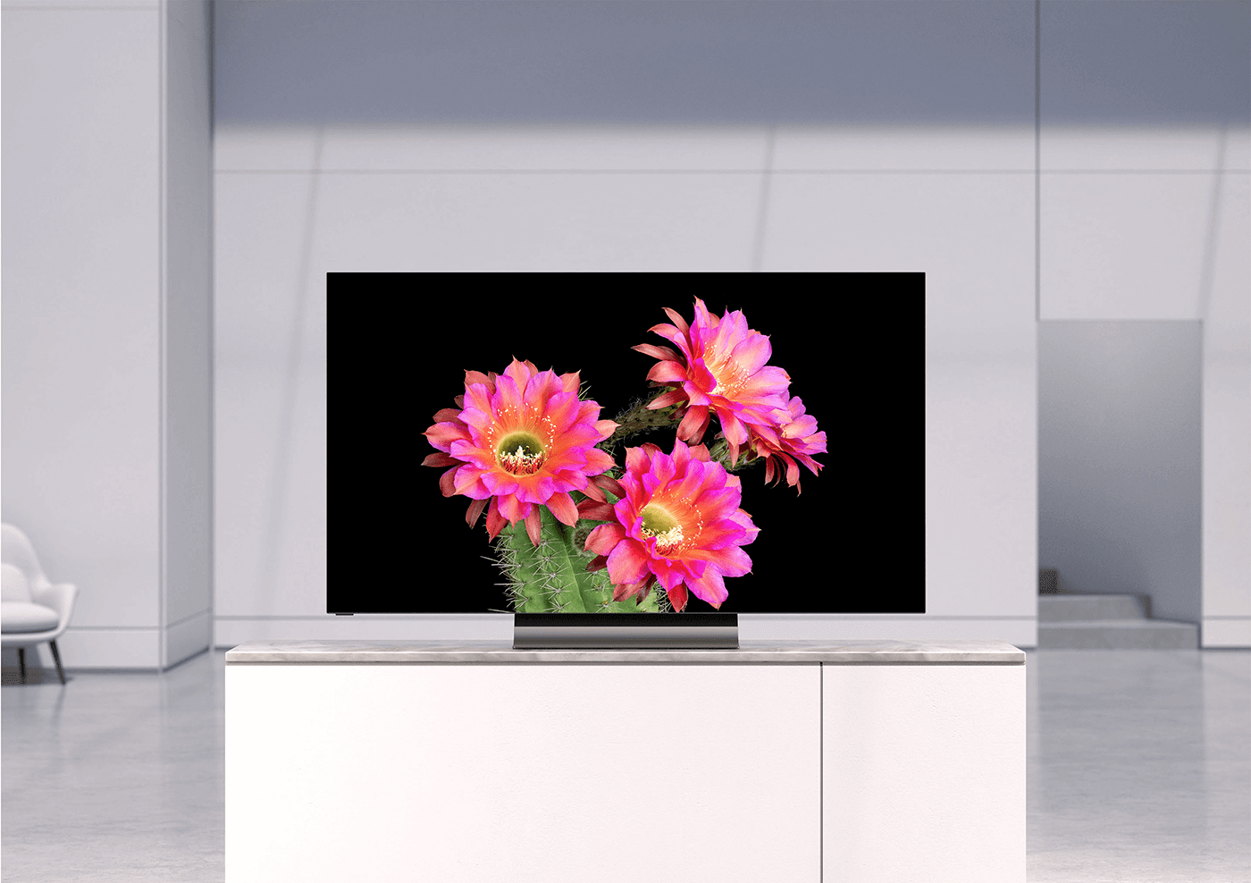 A television displaying a cactus blossoming with pink flowers is sitting on a television stand.